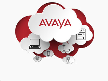 AVAYA Unified Communication Cloud