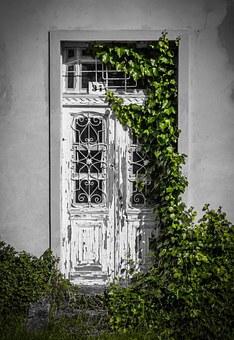 von Efeu bewachsene Tür